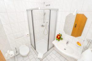 Dusche WC Haartrockner